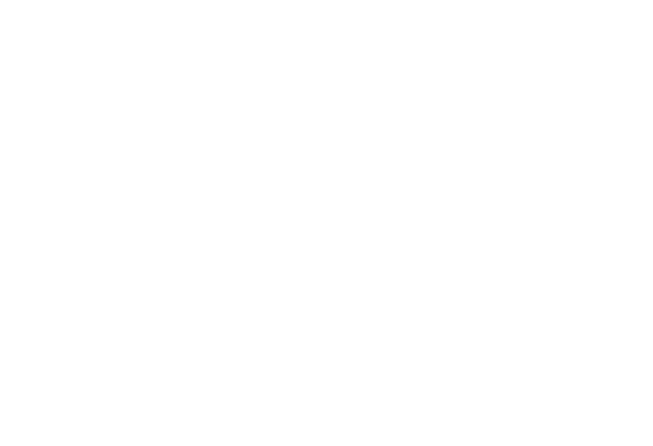 Half Diamond Electric